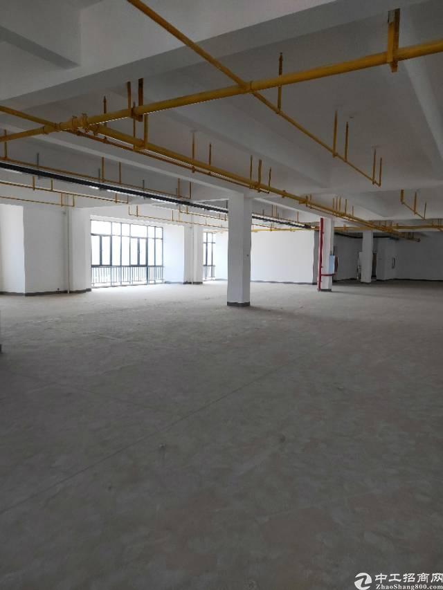 武汉市江东湖高新光谷二路新建厂房出租,证件齐全大小可分租-图4