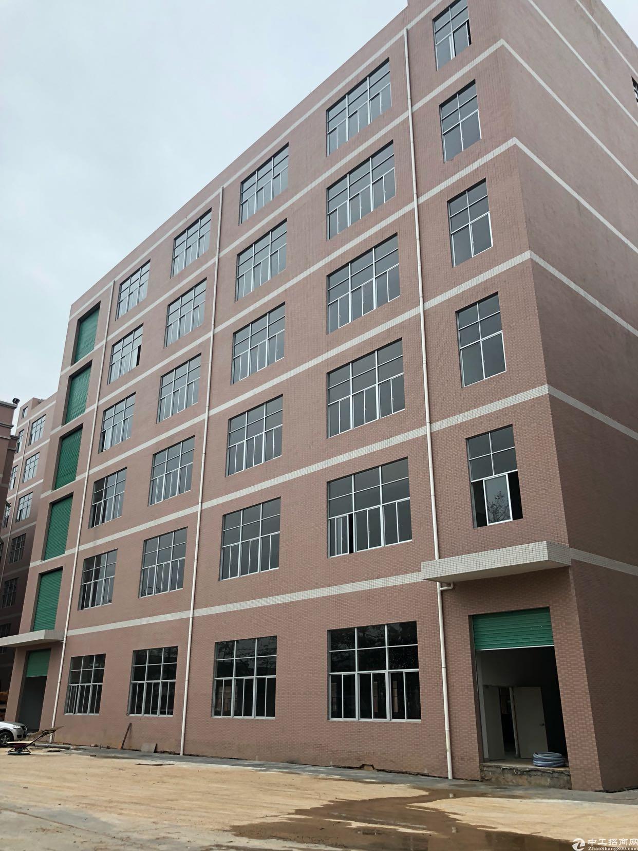 虎门镇树田358省道旁全新独院厂房,大面积可分租,可办环评-图3