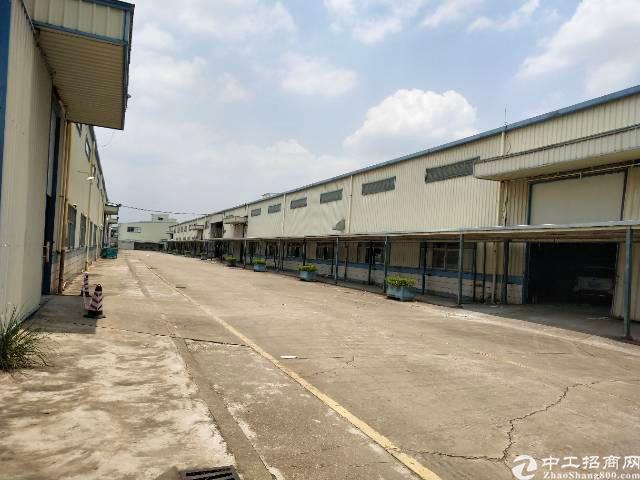 平湖富民工业区单一层2500平方钢构出租,高度8米
