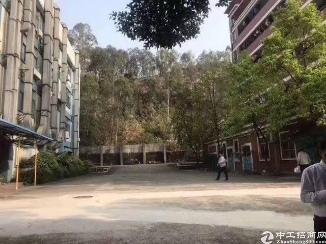 松岗山门新出独院3900平方厂房出租-图3