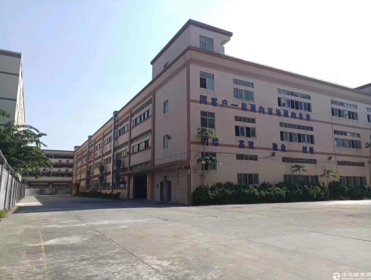 大岭山标准厂房一楼6米高1800平房出租