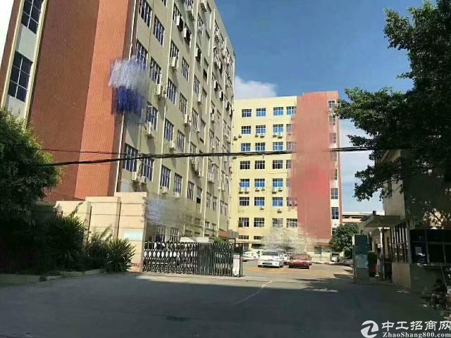 沙井共和新和大道旁新出原房东带精装修厂房800平