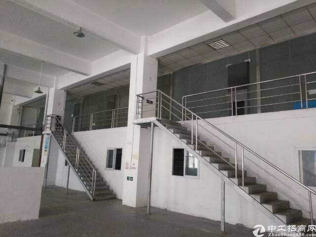 福永会展旁一楼带阁楼带装修1800平无转让费
