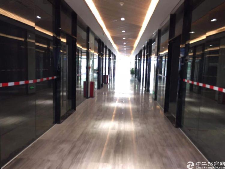 广州珠吉茅岗路主干道旁边四楼50平方豪华装修