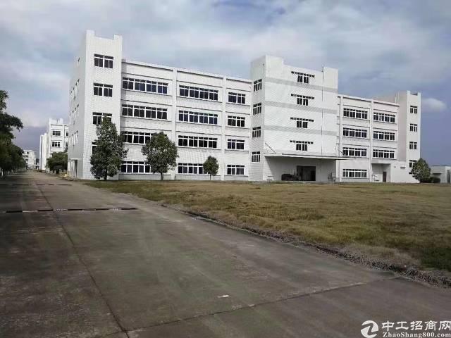 马安5万平厂房出租
