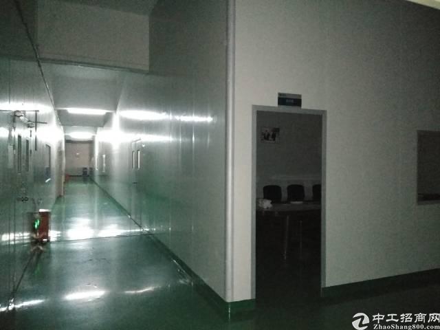塘厦镇高大尚工业区楼上带装修3900平方出租-图4