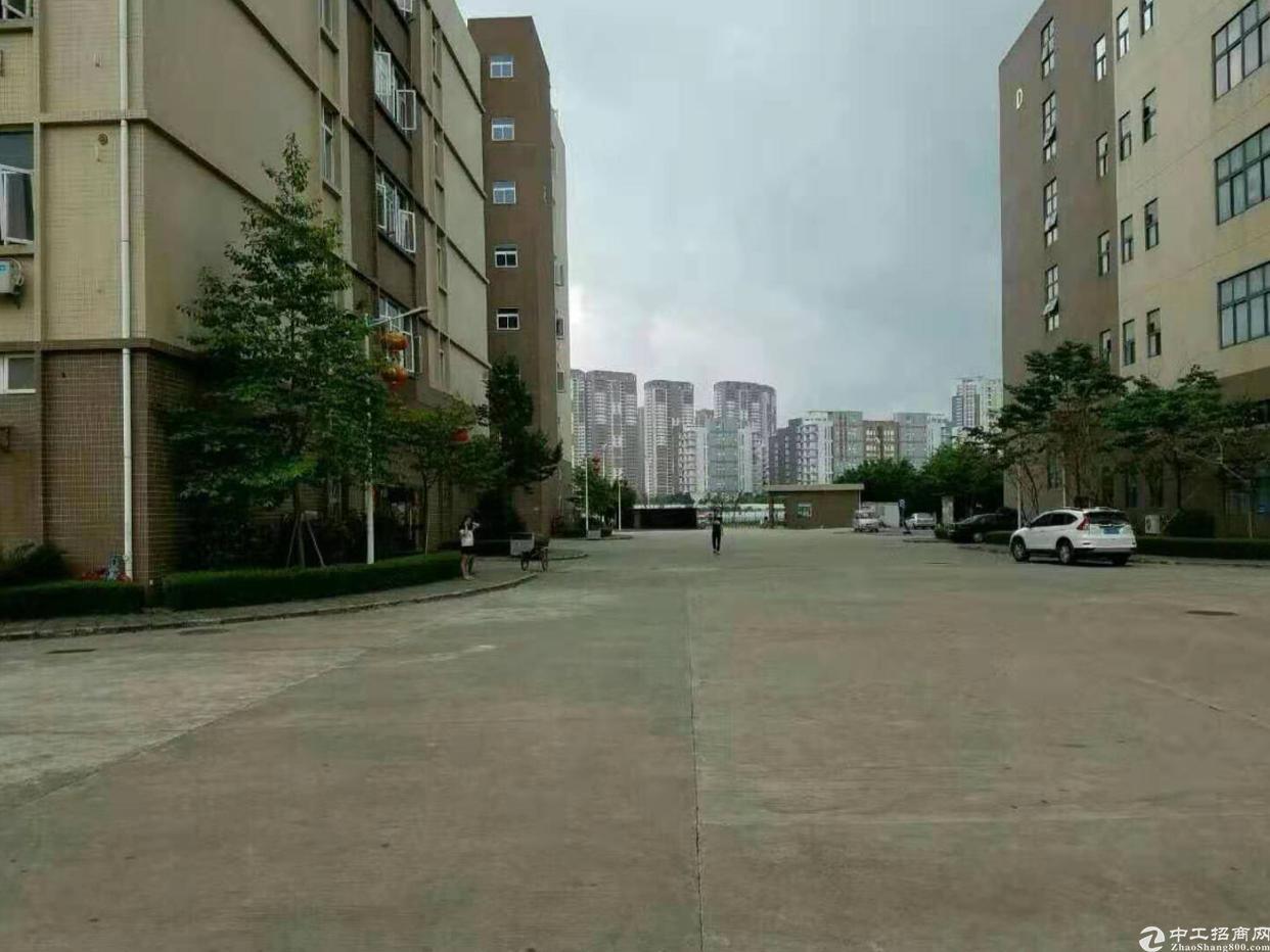 龙岗南联地铁口红本标准厂房一楼800平整租22可分租