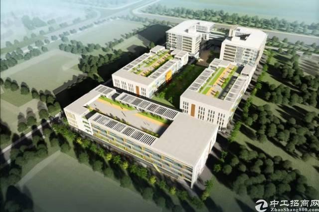 南沙12万平米全新厂房出租1000平米起分租-图5