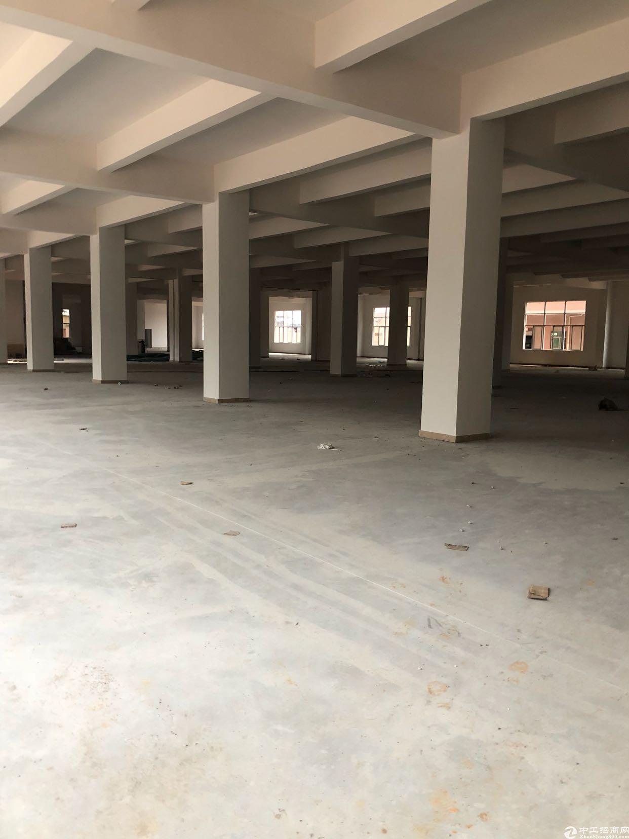 虎门镇树田358省道旁全新独院厂房,大面积可分租,可办环评-图5
