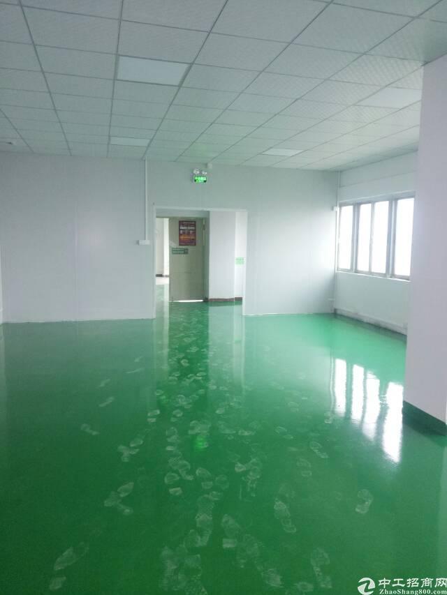 福永新田新出一楼原房东2700平方厂房出租