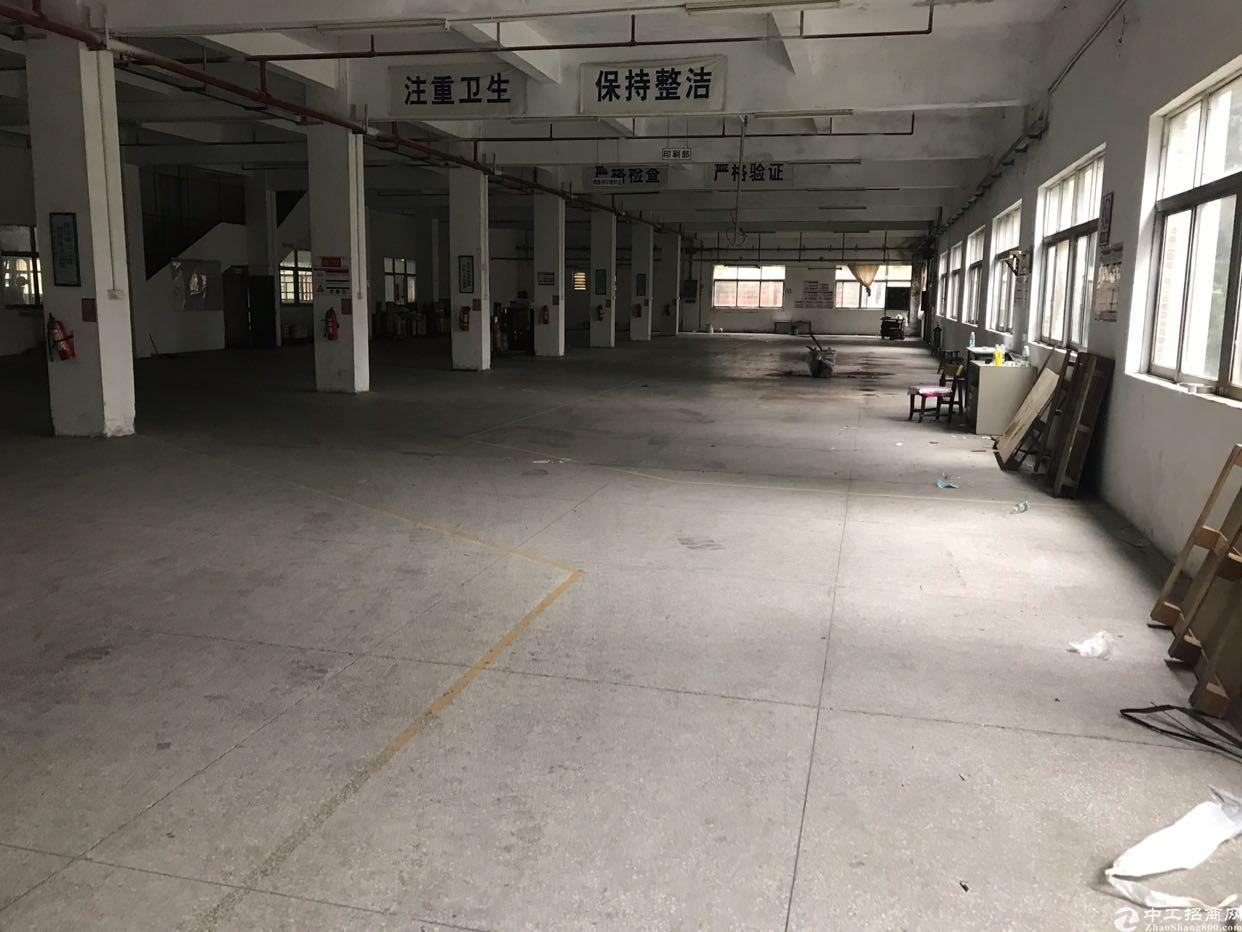 万江独院厂房3500平方米出售