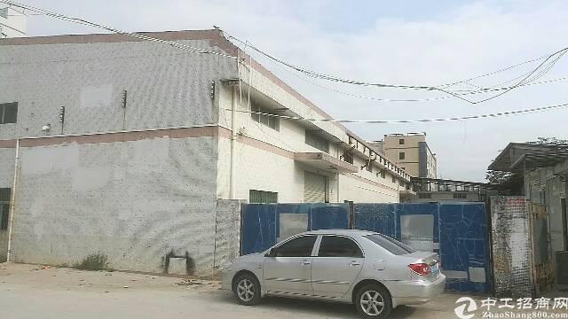 公明龙大高速路口附独院钢构厂房(3400平米)出租,滴水7米