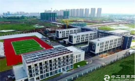 2019年临深圳区的(低价出售) 塘厦镇国有双证厂房出售