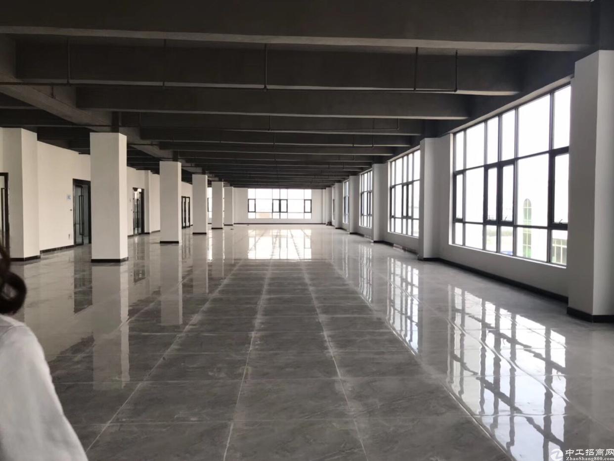福永新出写字楼168平方米