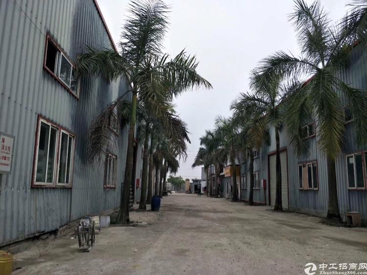 惠州市博罗县新出10元超靓单一层厂房出租