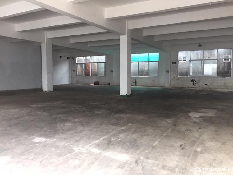 石岩北环新出一楼厂房560平低价出租