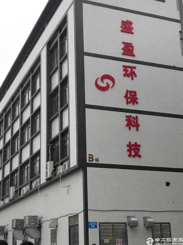 广州市新塘镇独院有大量厂房出租