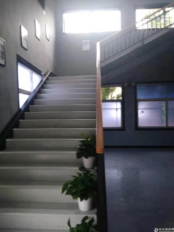 沙井107国道边新出单一层标准厂房7500平米-图4