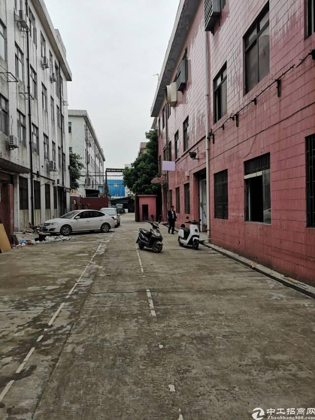 福永凤凰独门独院每层1100平方