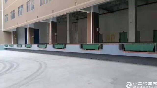 红本,消防齐全,凤岗新出10000平方标准仓库出租,带自动升