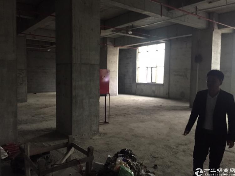 沙井中兴路970平精装修写字楼出租
