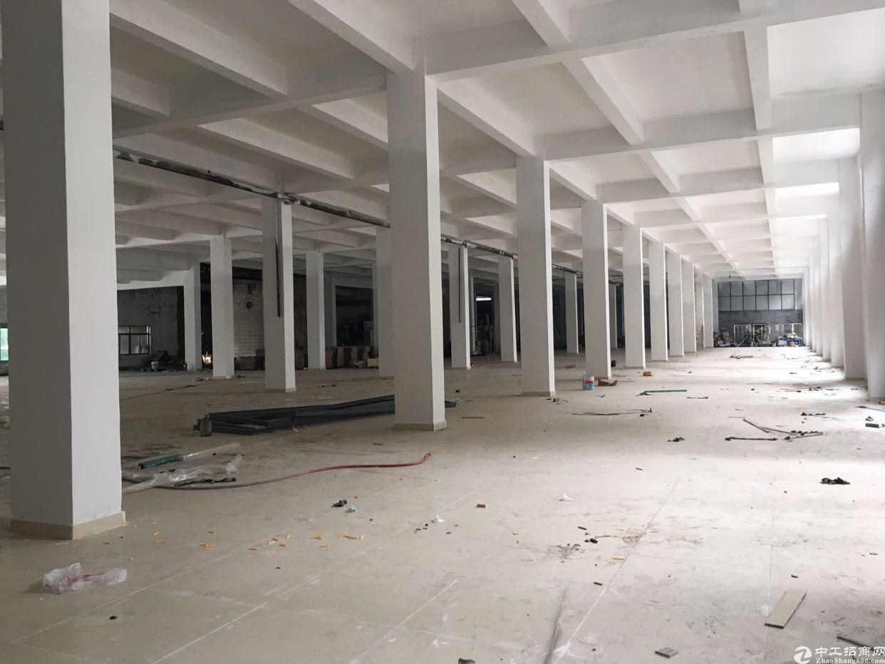 平湖华南城旁新出原房东带红本标准厂房一楼9000平,层高6米
