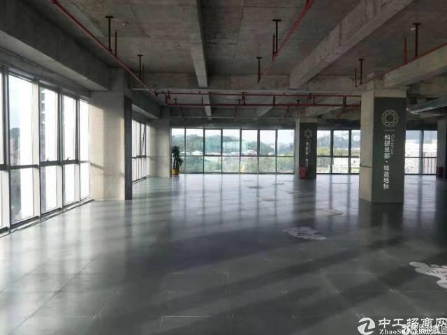 黄埔科学城沈海高速出口500米精装写字楼招租
