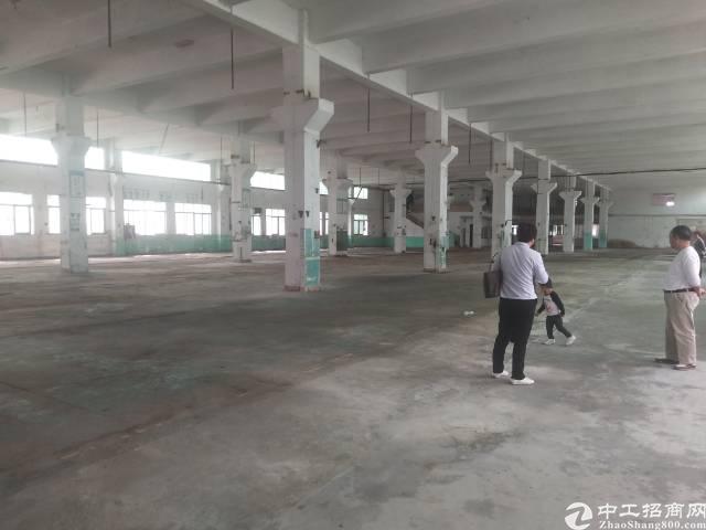 沙井新出1/2楼厂房4000平方出租