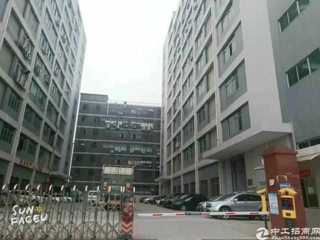 光明新区公明长圳公园附近新出一楼带牛角3000平方标准厂房出