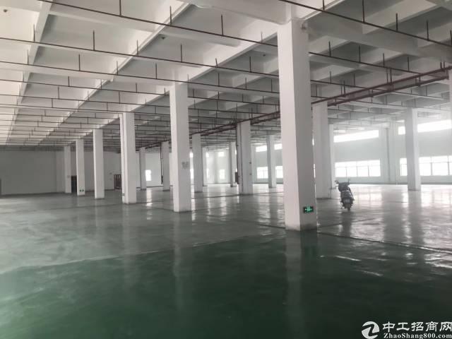 惠州,原房东,无公摊,独栋厂房招租-图4