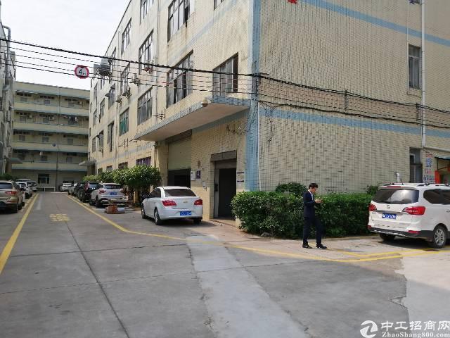 一手房东红本独门独院3800平米一楼高度5米