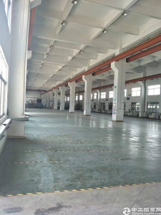园洲镇全新标准厂房1-3层11000平方低价出租
