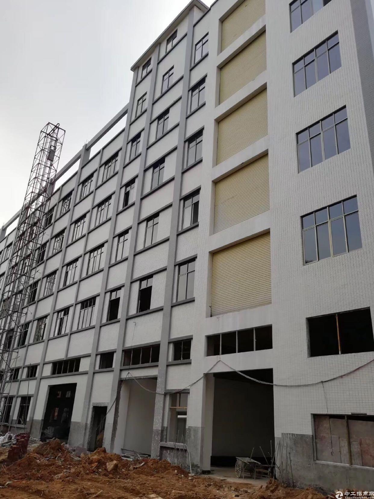 东莞市一手房东独院标准厂房出租,12000平方
