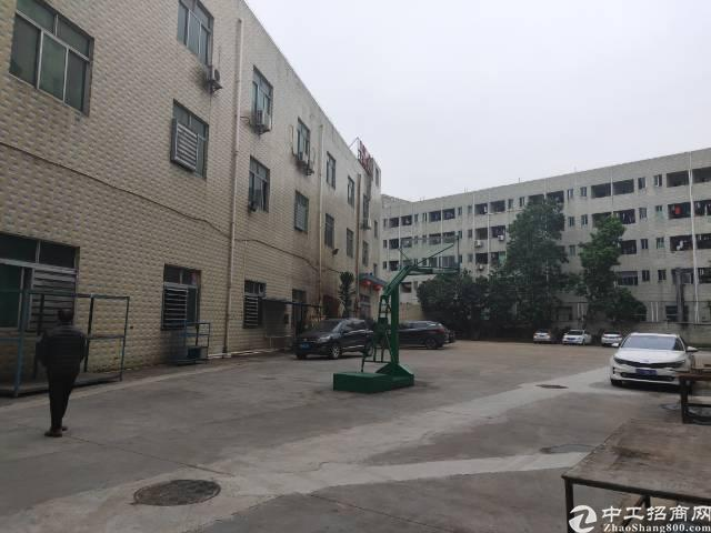 公明西田原房东一号楼2400平方出租。