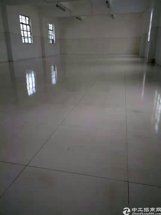 马安有红本独院厂房5600平方招租
