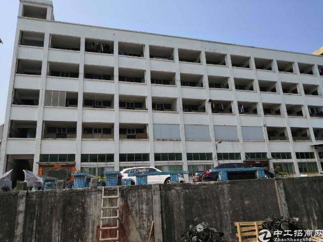 万江国有独院1万方厂房出售