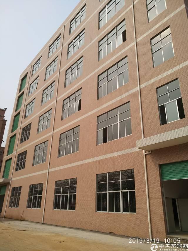 虎门镇3万平米可包租全新标准独院电梯厂房