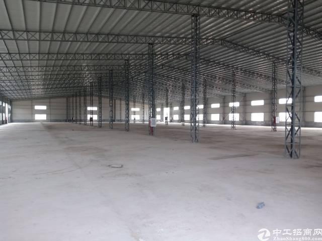 仲恺陈江单一层钢构8800平米滴水八米招租-图4