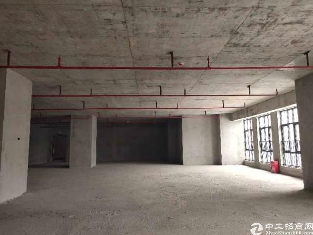 东莞茶山全新独栋可分割小面积有独立红本厂房出售,可按揭贷款