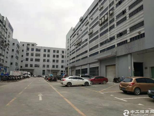 福永塘尾独院楼上260平米精装修不要转让费厂房出租-图8