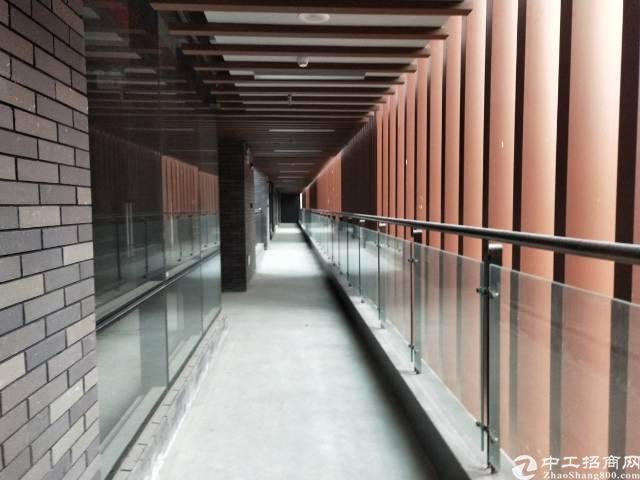 广州黄埔独院精品距离地铁500米可分租办公室