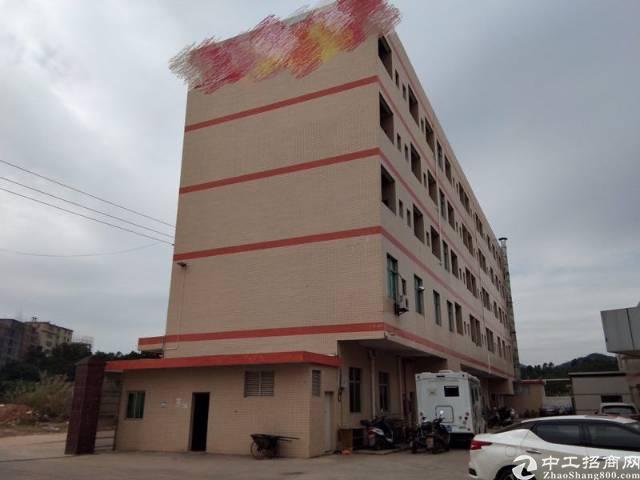 惠州惠阳三和经济开发新出砖墙到顶单一层钢结构厂房5000平方