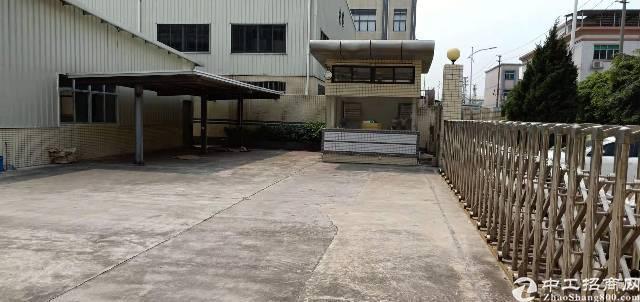 大朗小独院3800平方精装修厂房出租-图4