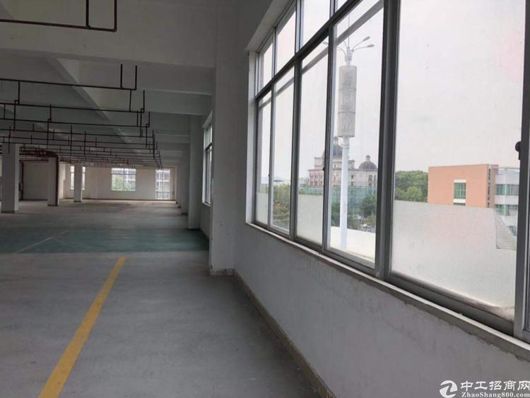 高塘石地铁口附近产业园新空出5楼整层办公室厂房1160平