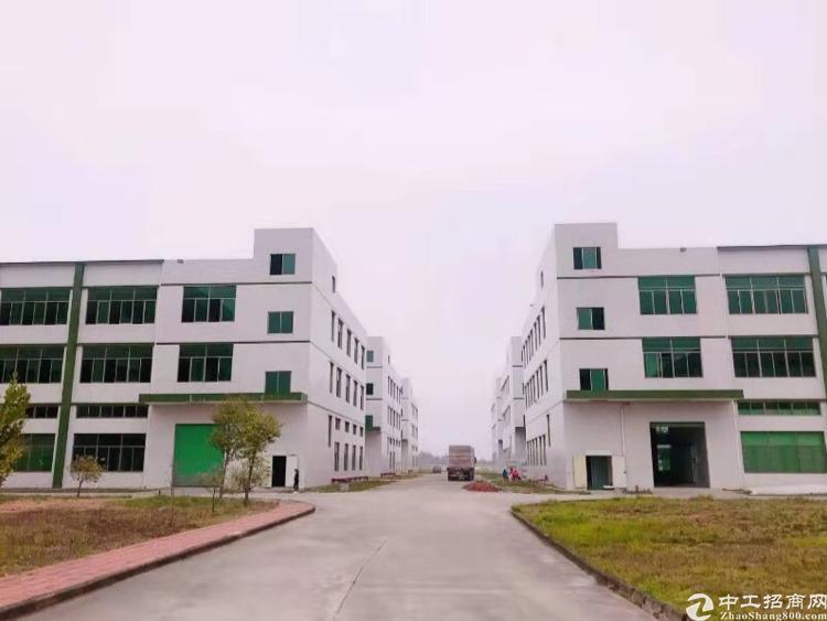 惠州博罗县杨村镇4万平方标准厂房出租:厂房共6栋,每栋3层