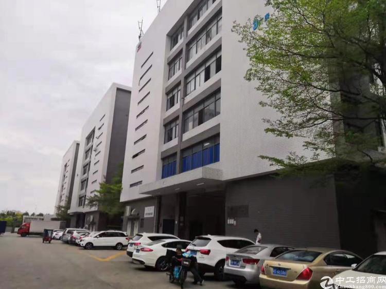 光明南光出口高新园区楼上整层2300平,仓库加工等行业光-图4