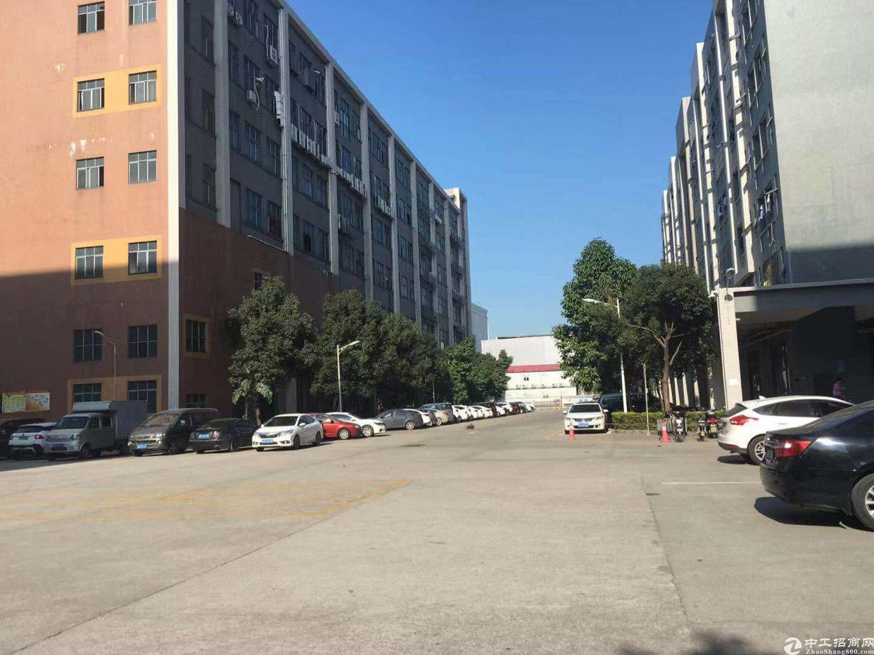 西乡鹤洲桃源居附近4楼2400平方出租,租金25元月