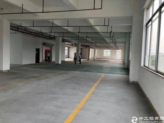 智慧城广汕二路600号天河软件9栋5楼仓库1160平,两台