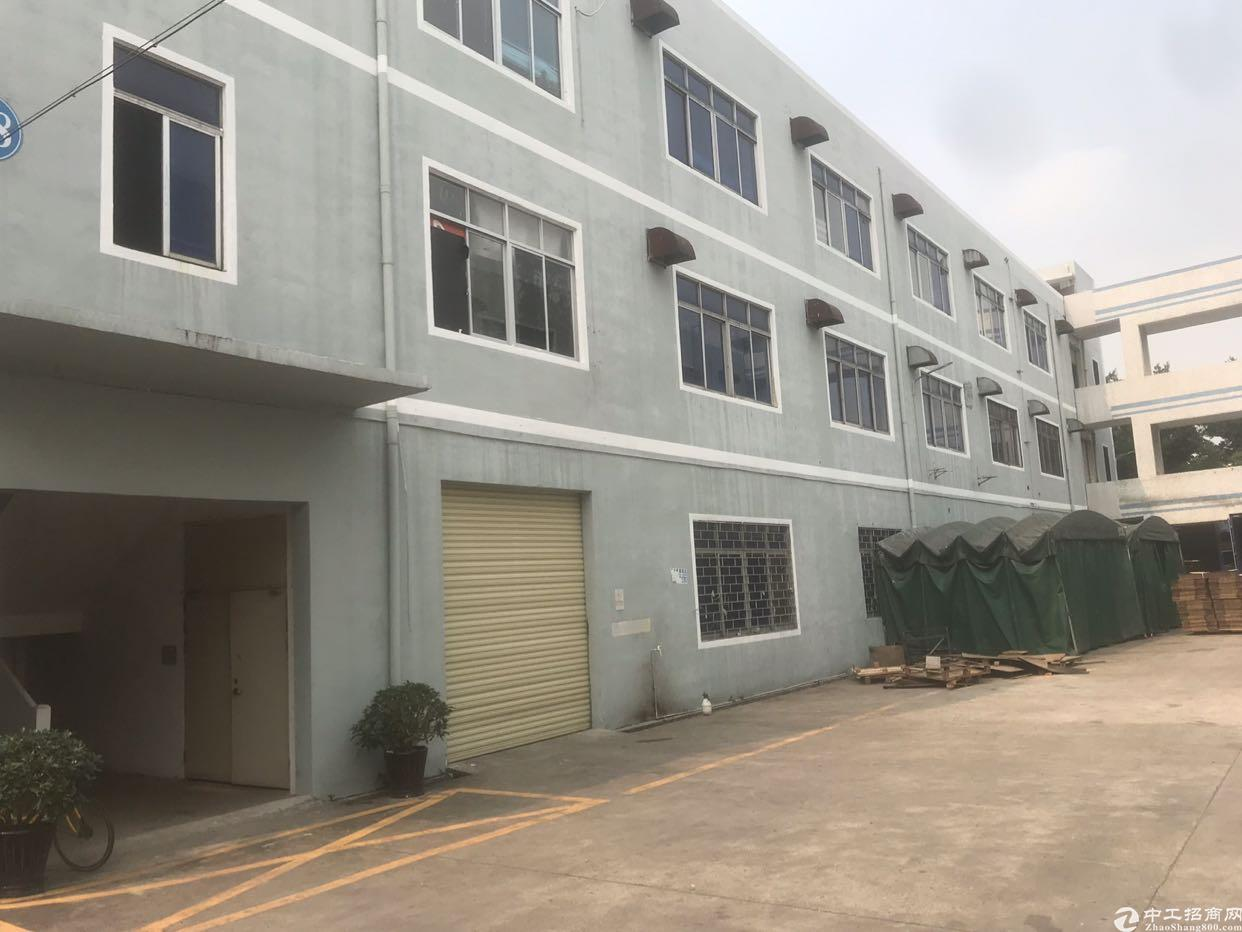 松岗大田洋新出豪华装修独院1-3层3600平方米出租