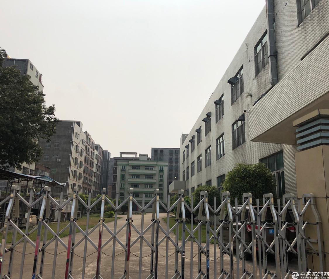 惠阳区双证厂房出售